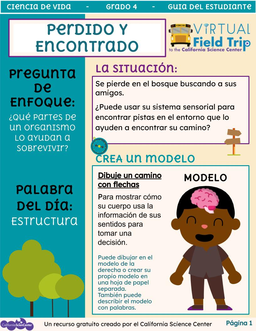 Preview image of student activity guide in Spanish.