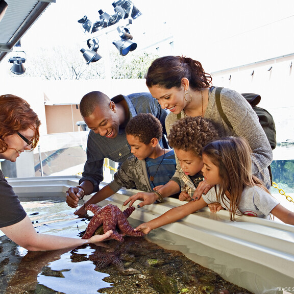 A family reaches out to touch a large sea star held by an aquarist
