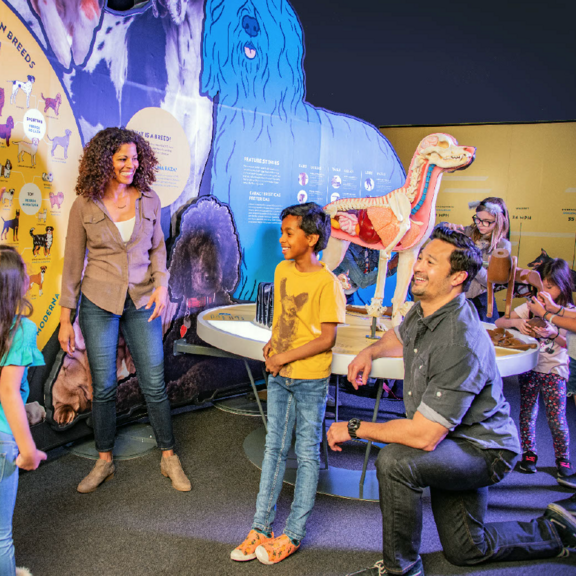 Kids and two adults gather around giant dog-shaped graphics and a 3D model of dog anatomy.